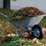 7 Tips for Winterizing Your Garden