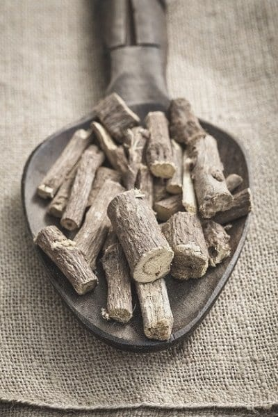 Licorice root in a metal spoon resting on a piece of burlap